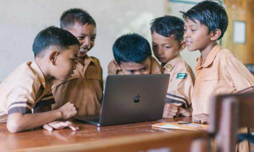 environmental warriors stem ginger education